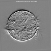 SWAP follows and catches a Prominence Eruption